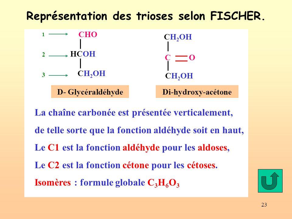 Représentation des trioses selon FISCHER.