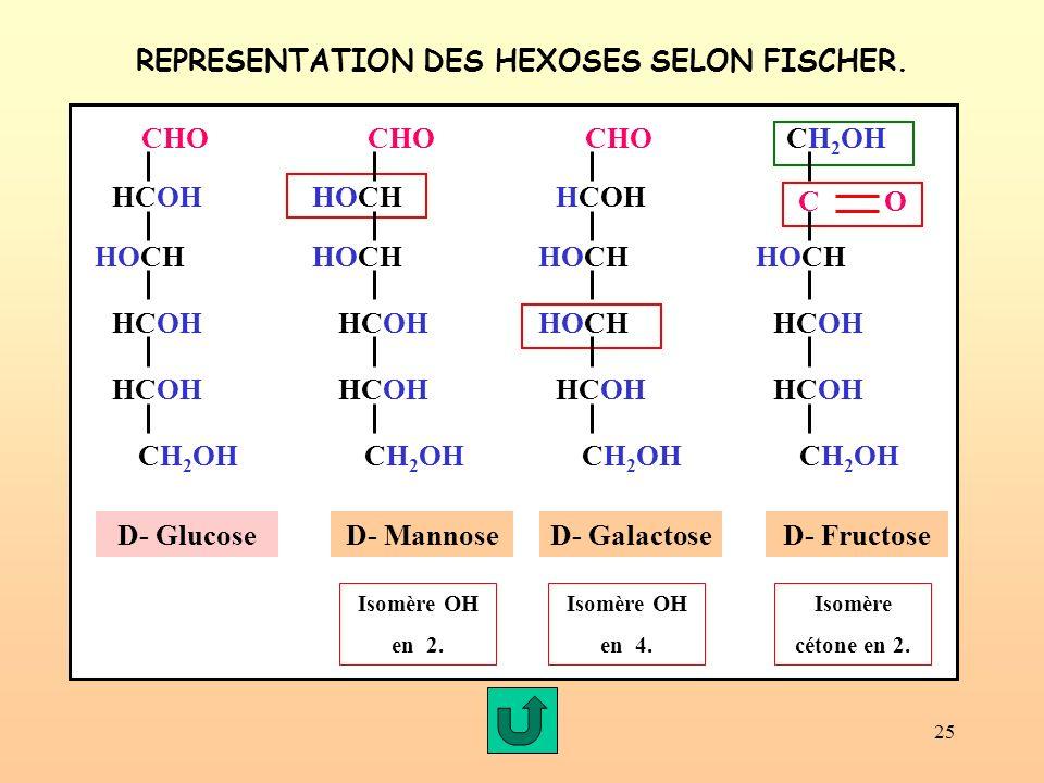 REPRESENTATION DES HEXOSES SELON FISCHER.