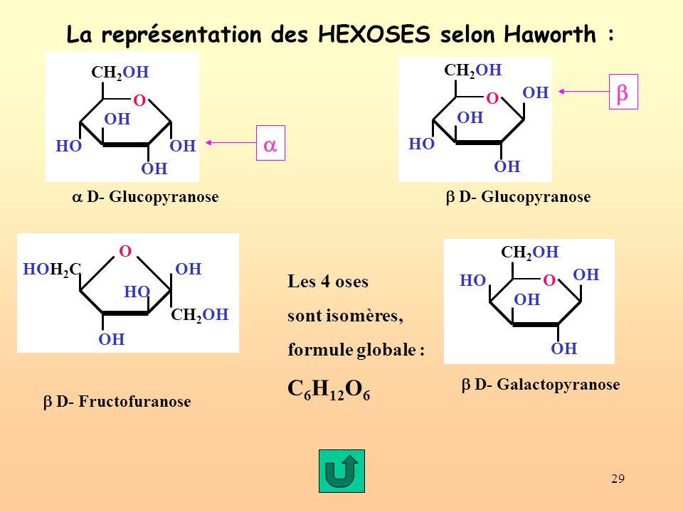 La représentation des HEXOSES selon Haworth :