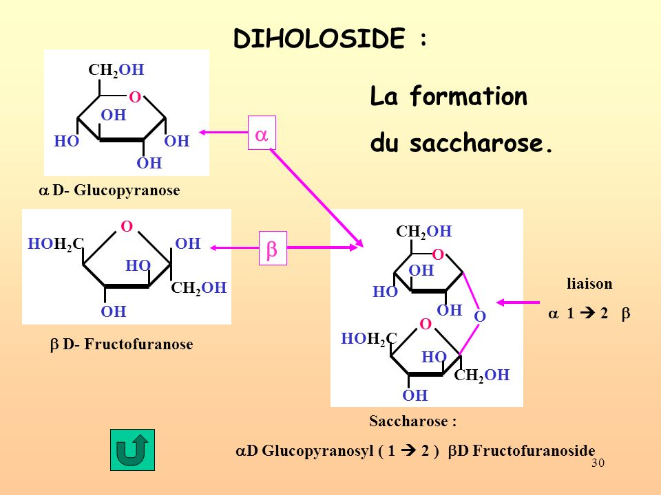 aD Glucopyranosyl ( 1  2 ) bD Fructofuranoside