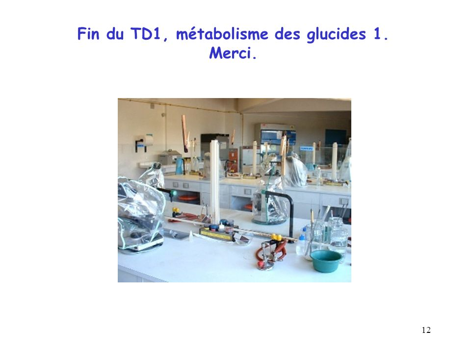 Fin du TD1, métabolisme des glucides 1. Merci.