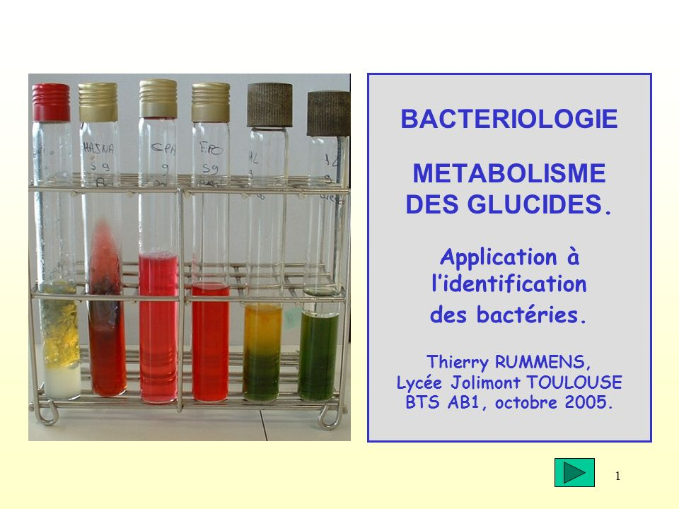 BACTERIOLOGIE METABOLISME DES GLUCIDES