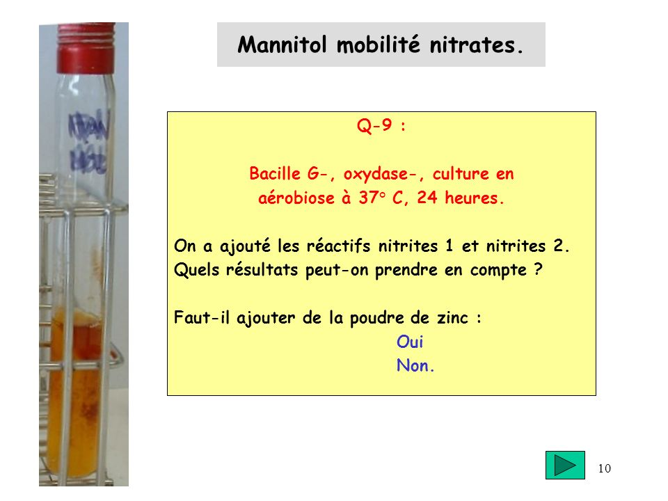 Mannitol mobilité nitrates.