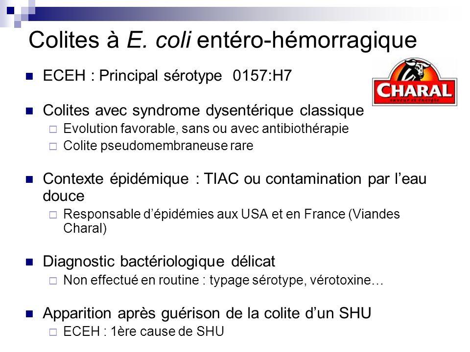 Colites à E. coli entéro-hémorragique