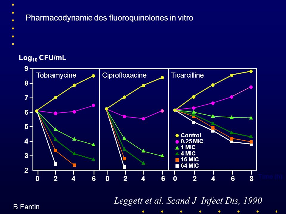 Pharmacodynamie des fluoroquinolones in vitro
