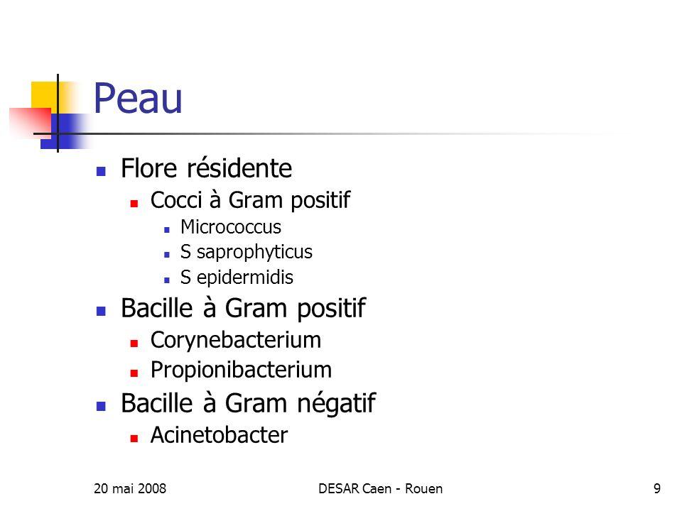 Peau Flore résidente Bacille à Gram positif Bacille à Gram négatif