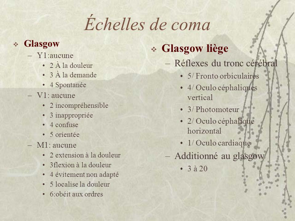 Échelles de coma Glasgow liège Glasgow Réflexes du tronc cérébral
