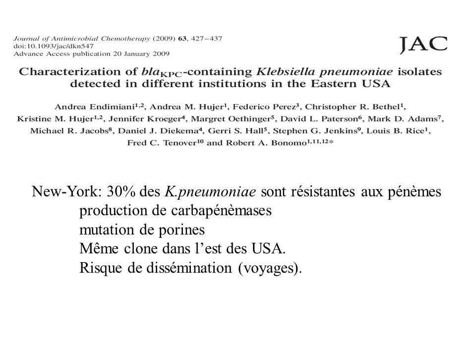 New-York: 30% des K.pneumoniae sont résistantes aux pénèmes