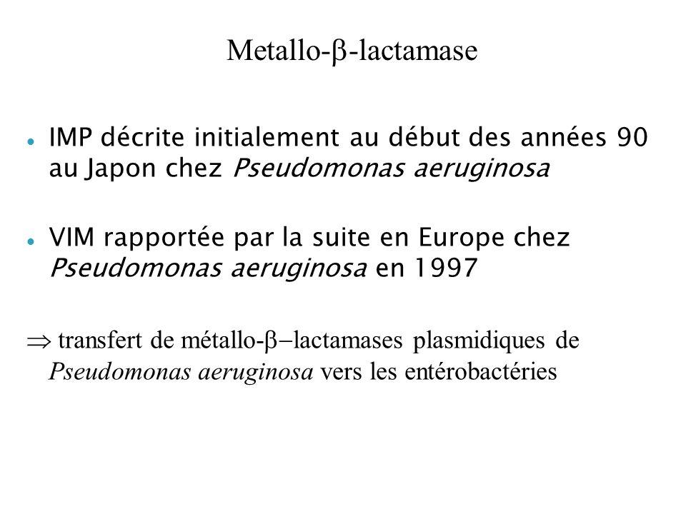 Metallo-b-lactamaseIMP décrite initialement au début des années 90 au Japon chez Pseudomonas aeruginosa.