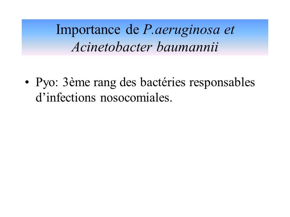 Importance de P.aeruginosa et Acinetobacter baumannii