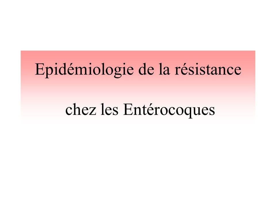 Epidémiologie de la résistance chez les Entérocoques
