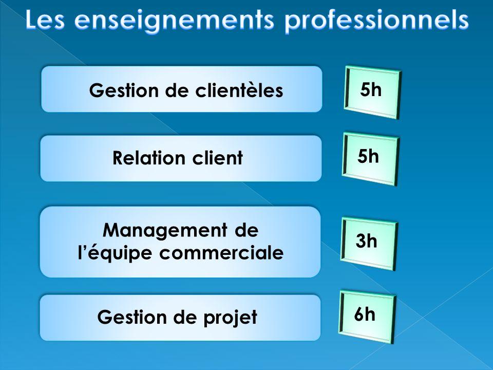 Les enseignements professionnels Management de l'équipe commerciale