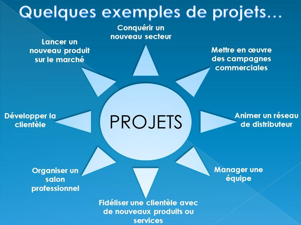 PROJETS Quelques exemples de projets… Conquérir un nouveau secteur