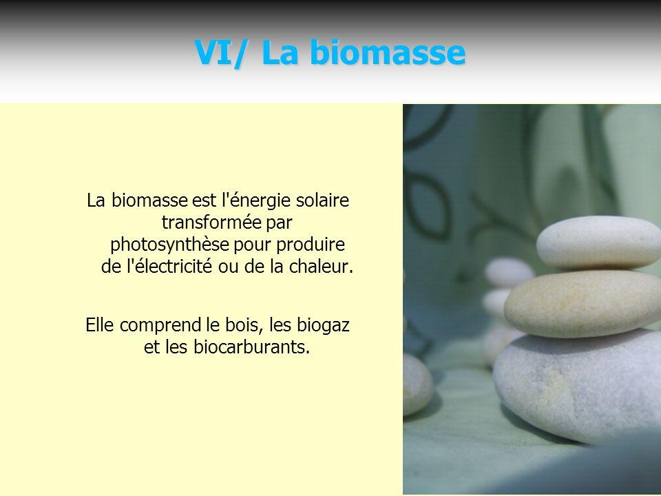 Elle comprend le bois, les biogaz et les biocarburants.