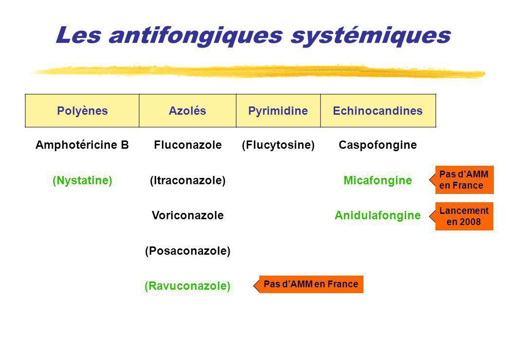 Les antifongiques systémiques