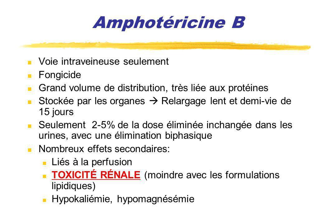 Amphotéricine B Voie intraveineuse seulement Fongicide