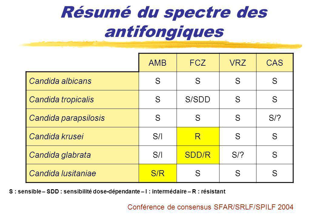 Résumé du spectre des antifongiques