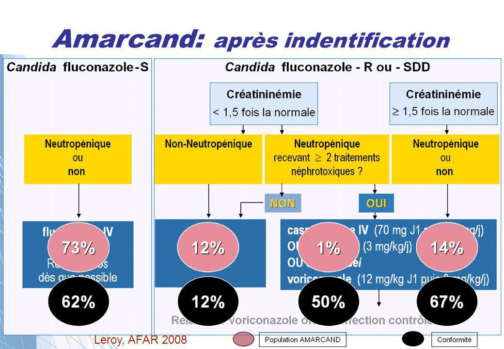 Amarcand: après indentification