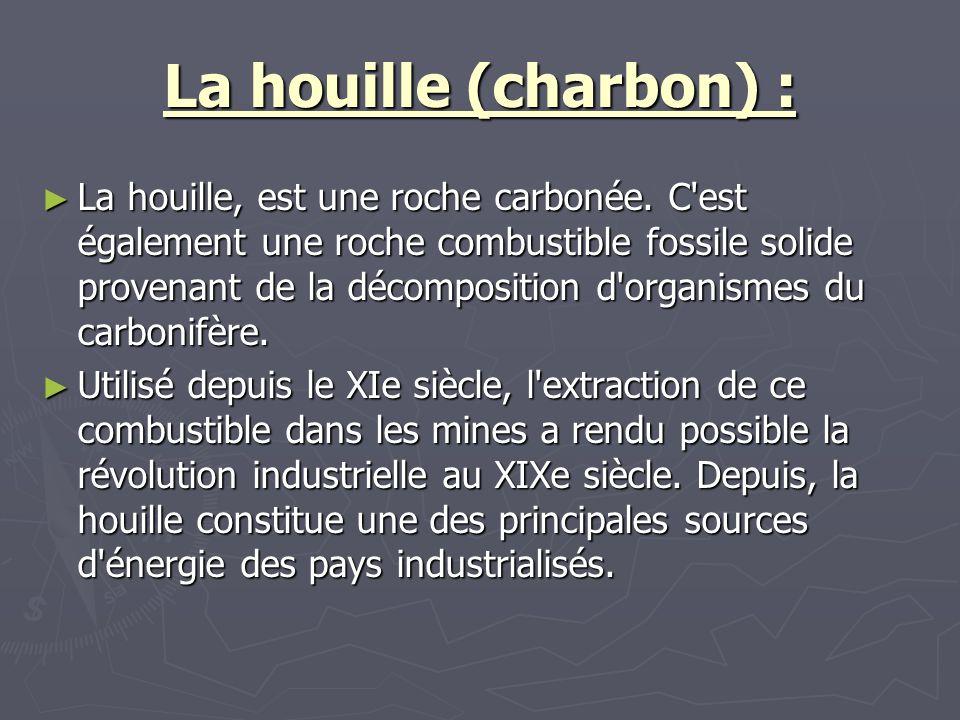 La houille (charbon) :