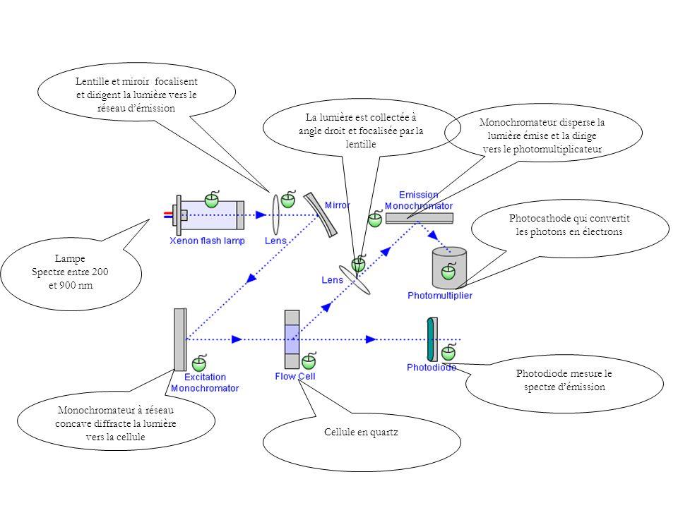 Monochromateur à réseau concave diffracte la lumière vers la cellule
