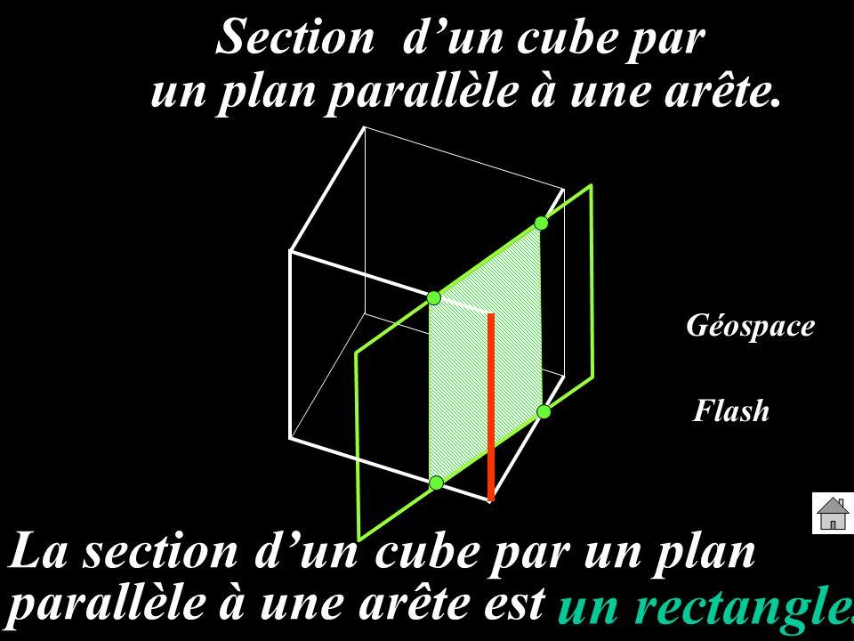 un plan parallèle à une arête.
