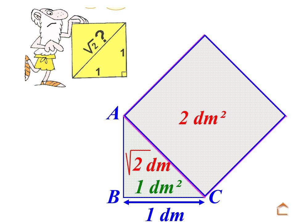 1 dm 1 dm² A B C dm 2 2 dm²