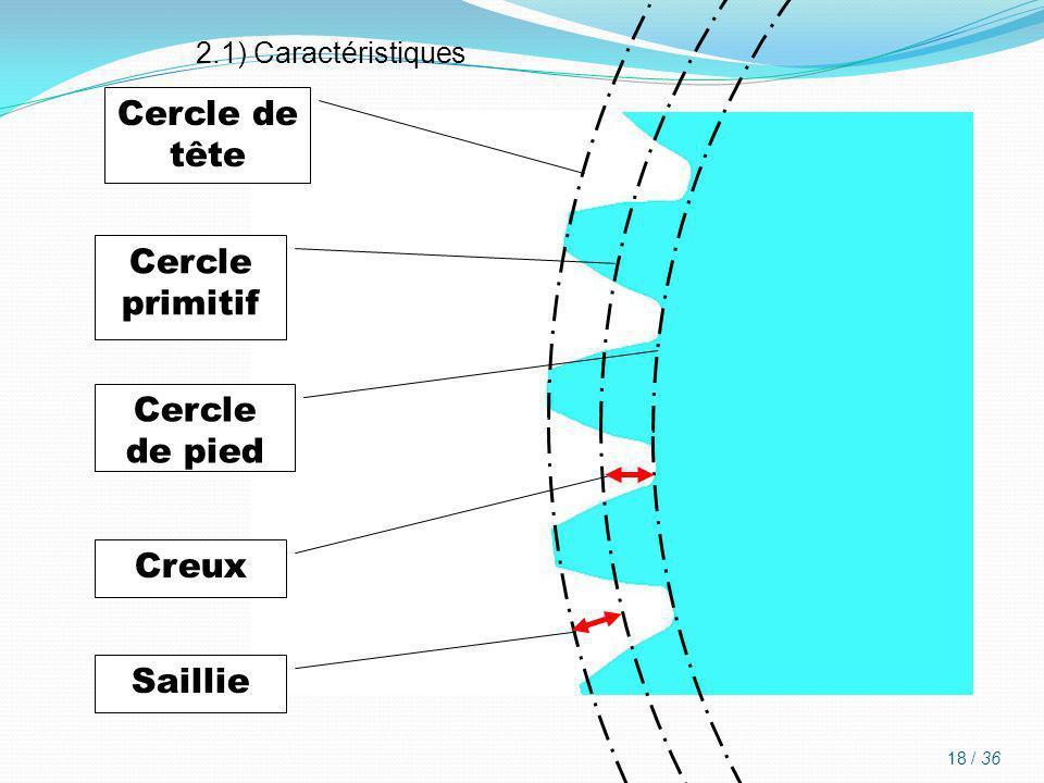 Cercle de tête Cercle primitif Cercle de pied Creux Saillie