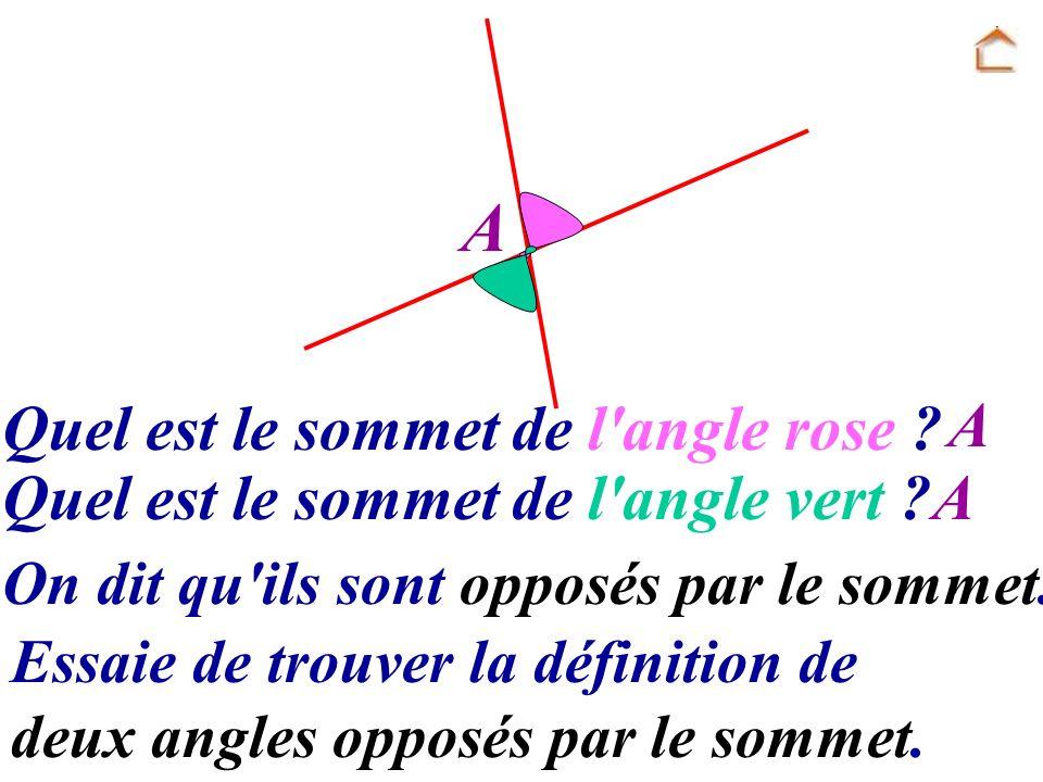 A Quel est le sommet de l angle rose A
