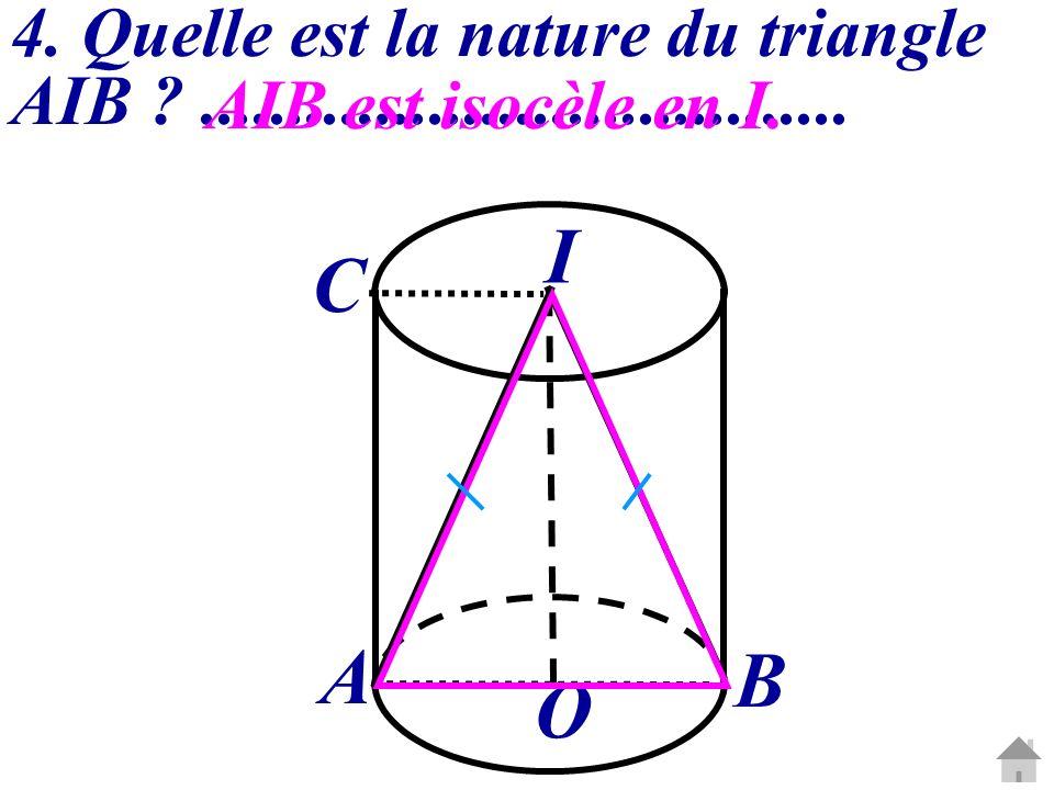 4. Quelle est la nature du triangle AIB .....................................