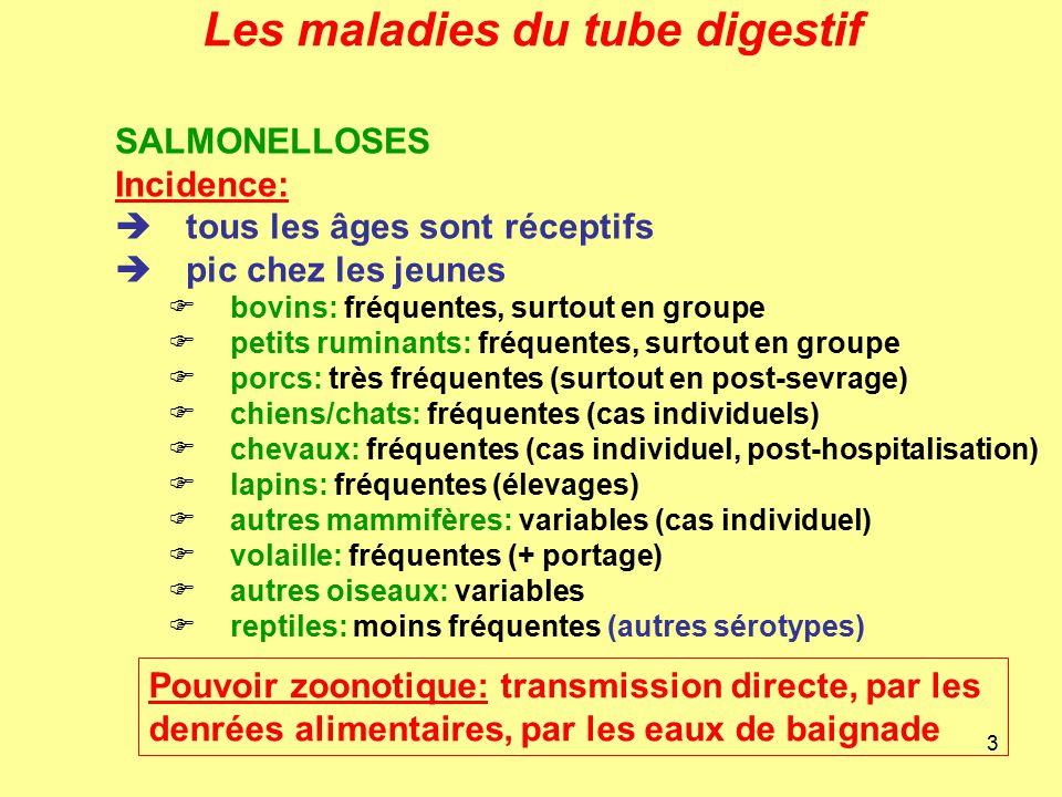 Cours de bact riologie ppt video online t l charger for Les maladies des volailles
