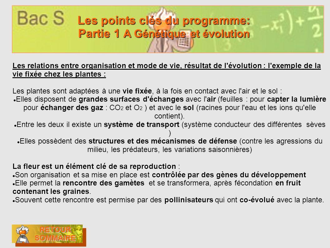 Les points clés du programme: Partie 1 A Génétique et évolution
