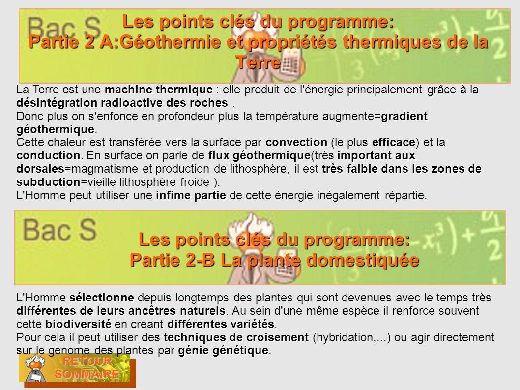 Les points clés du programme: Partie 2-B La plante domestiquée