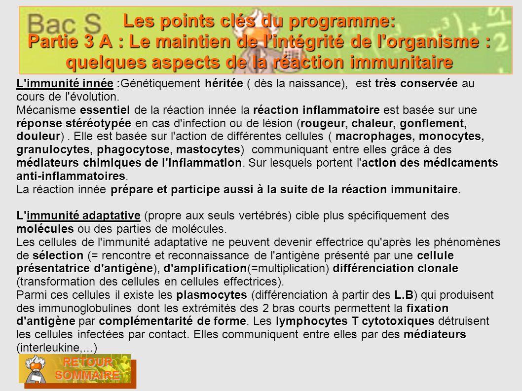 Les points clés du programme: Partie 3 A : Le maintien de l intégrité de l organisme : quelques aspects de la réaction immunitaire