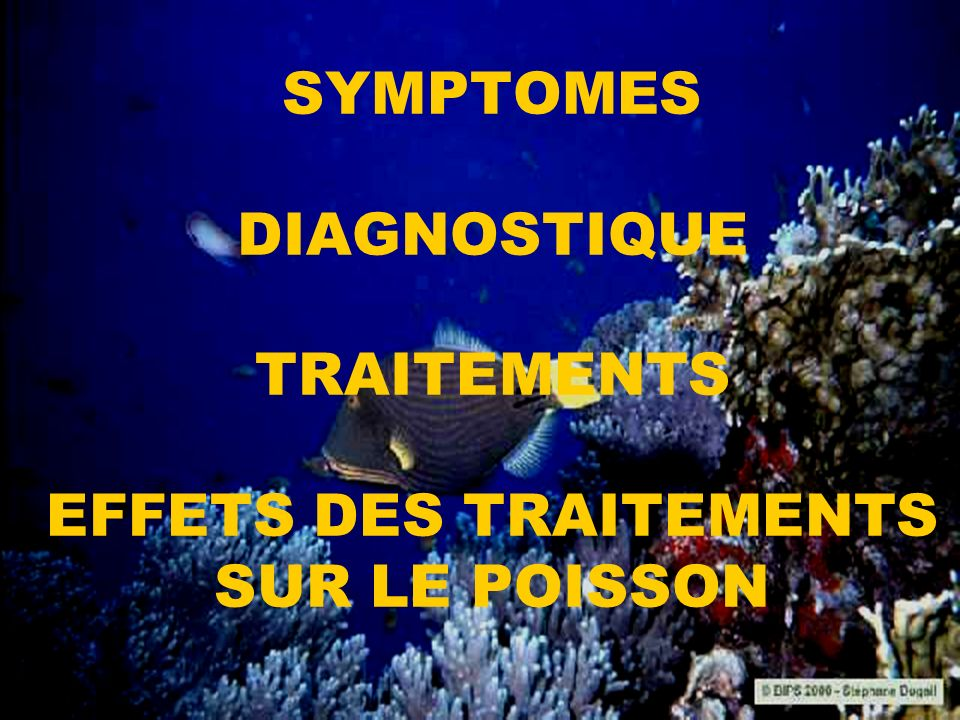 SYMPTOMES DIAGNOSTIQUE TRAITEMENTS EFFETS DES TRAITEMENTS SUR LE POISSON