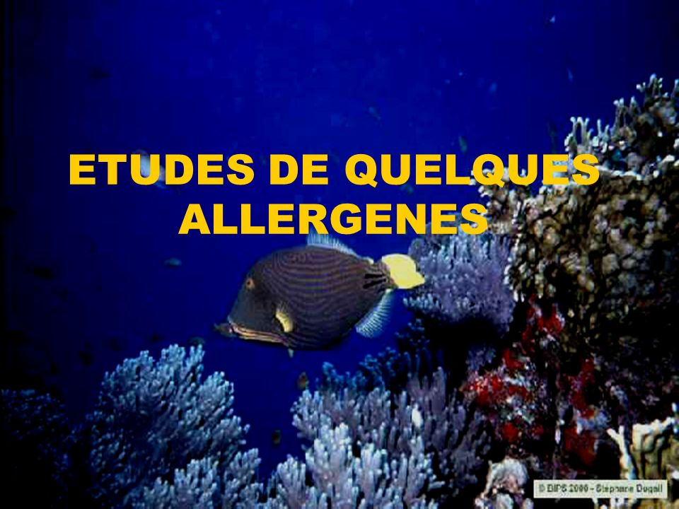 ETUDES DE QUELQUES ALLERGENES