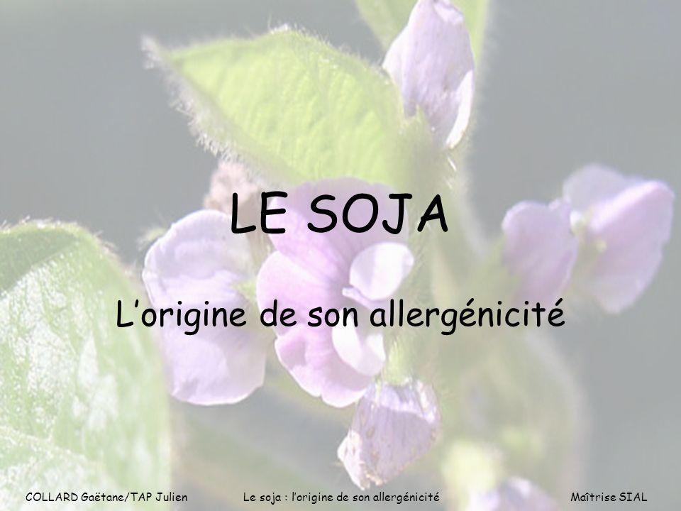 L'origine de son allergénicité
