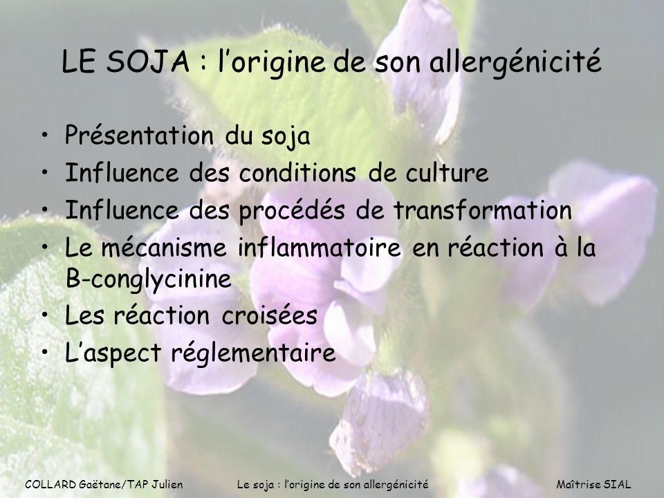 LE SOJA : l'origine de son allergénicité