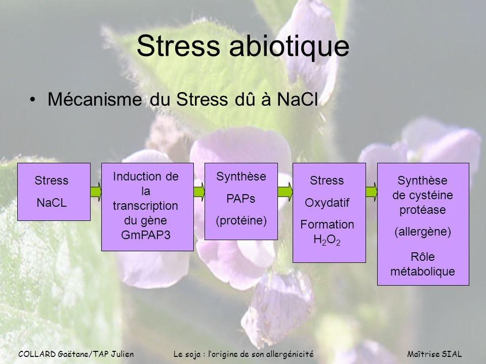 Stress abiotique Mécanisme du Stress dû à NaCl Stress NaCL