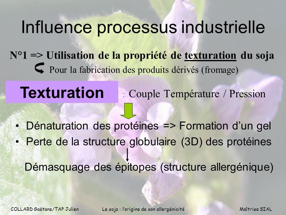 Influence processus industrielle