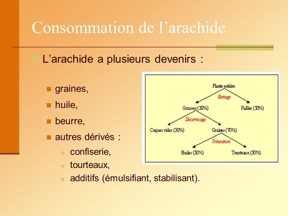 Consommation de l'arachide