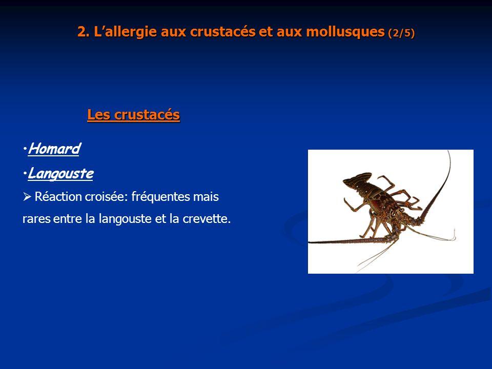 2. L'allergie aux crustacés et aux mollusques (2/5)