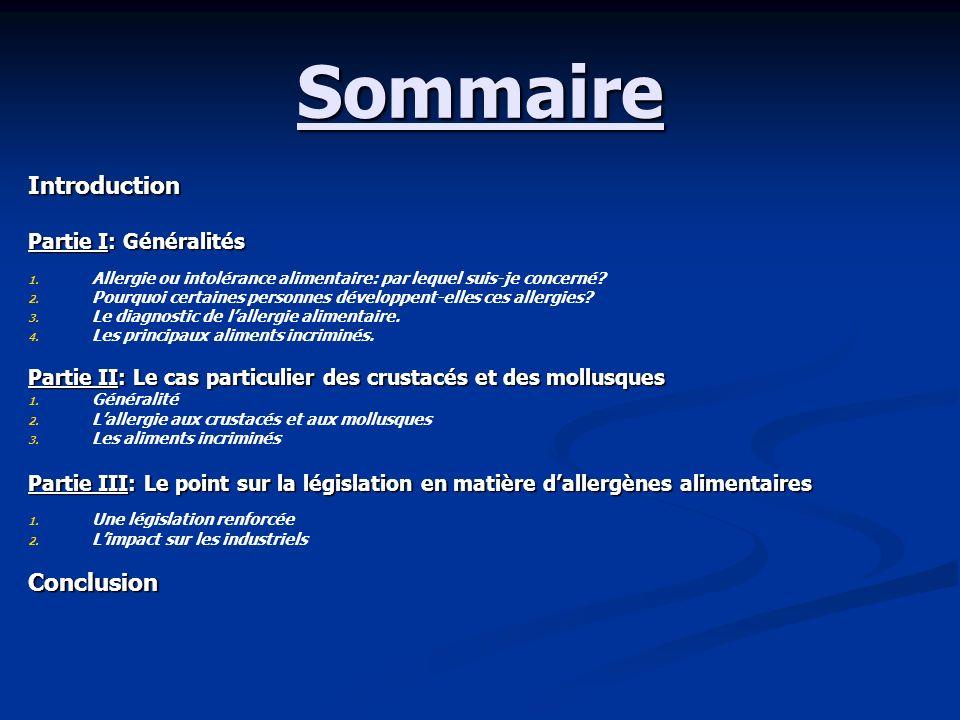 Sommaire Introduction Conclusion Partie I: Généralités