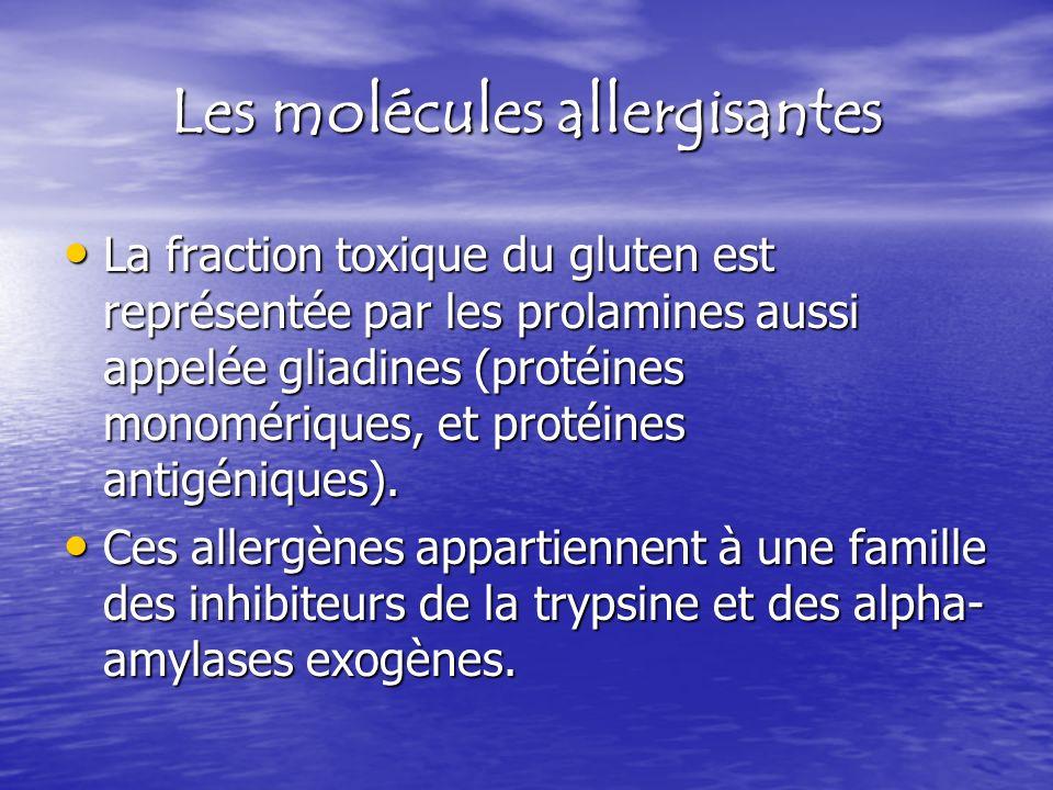 Les molécules allergisantes
