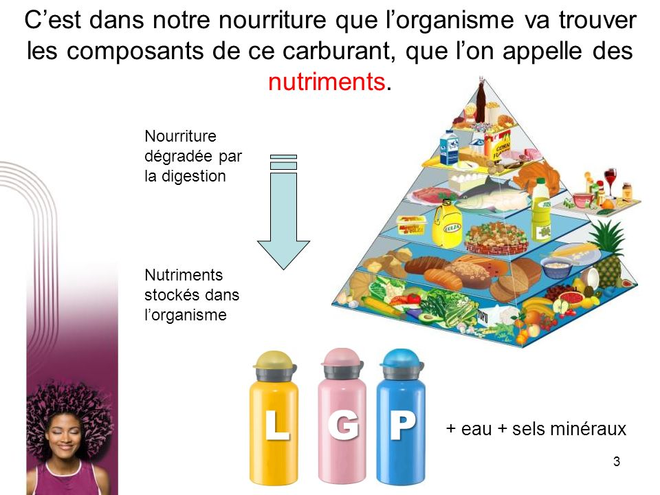 C'est dans notre nourriture que l'organisme va trouver les composants de ce carburant, que l'on appelle des nutriments.