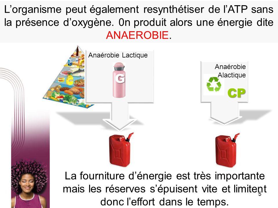 L'organisme peut également resynthétiser de l'ATP sans la présence d'oxygène. 0n produit alors une énergie dite ANAEROBIE.