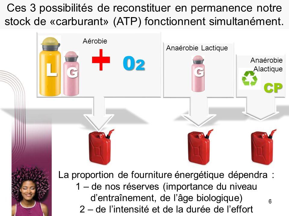 Ces 3 possibilités de reconstituer en permanence notre stock de «carburant» (ATP) fonctionnent simultanément.