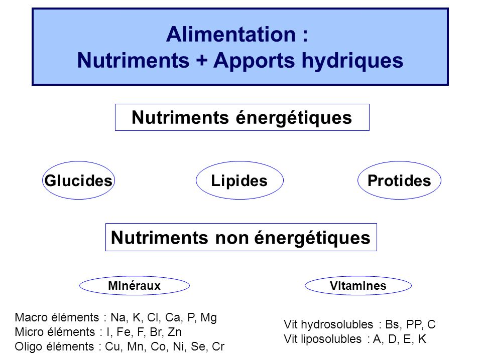 Alimentation : Nutriments + Apports hydriques