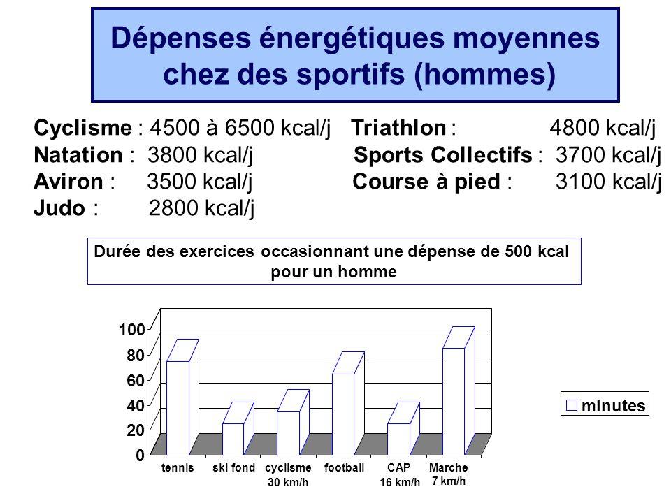 Dépenses énergétiques moyennes chez des sportifs (hommes)