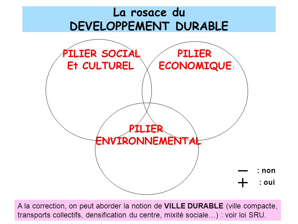 La rosace du DEVELOPPEMENT DURABLE
