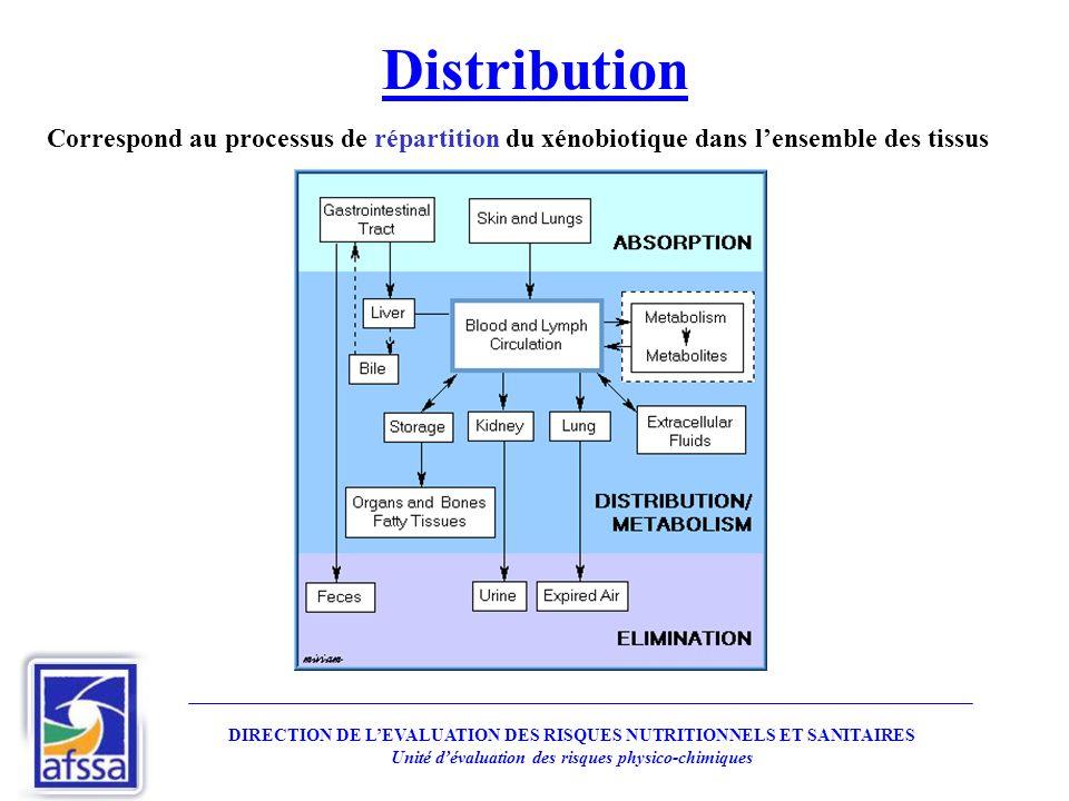 Distribution Correspond au processus de répartition du xénobiotique dans l'ensemble des tissus.